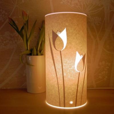 PVC Lighting other theme - II