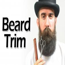 Beard and mustache - M006